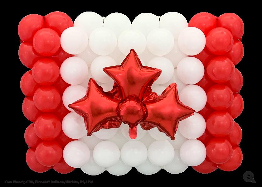 HH_QL_CanadianFlag_Cam.png