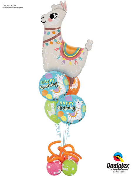 Leaping Llama Birthday_Pg33cOND18.png